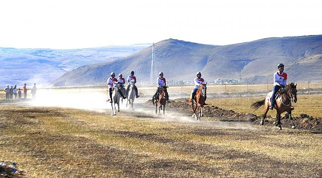 Atlar Ardahan'da dört nala!