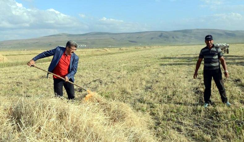 16 bin genç çiftçiye 503 milyon TL hibe