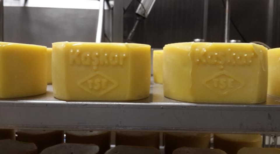 Ardahan'ın Peynirleri gelecek kuşaklara aktarılacak