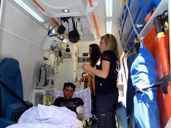 Posof'ta Ayı Saldırısı: 1 Yaralı